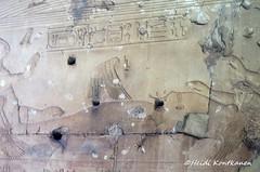 Body of Osiris (konde) Tags: osiris isis hieroglyphs abydos templeofsetii setii 19thdynasty newkingdom ancientegypt relief cartouche chapel goddess