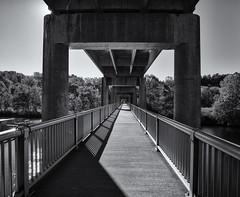 Through the bridge (Tim Ravenscroft) Tags: bridge jamesriver virginia monochrome blackandwhite blackwhite hasselblad hasselbladx1d x1d
