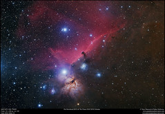 The Horsehead and The Flame Nebulae in RGB (Terry Hancock www.downunderobservatory.com) Tags: qhy qhy367c universetoday sky cosmos astrophotography astroimaging