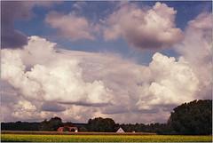 clouds (Ulla M.) Tags: wolken clouds raps kleinbild 135 minoltaxd7 tetenalcolortec umphotoart landscape landschaft reflectaproscan10t film fuji selfdeveloped selbstentwickelt freihand analog analogue dorsten ishootfilm