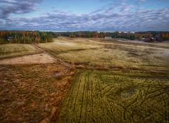 Suurpelto Aerial View 2 (Topolino70) Tags: xiaomi mi drone aerial field ilmakuva pelto fall autumn ruska syksy taivas pilvet sky clouds suurpelto espoo finland