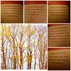 """for my German Flickr friends 😊  Buchauszüge des Buches - """"365 freche Sprüche für beherzte Frauen""""  😊 (Pixelchen1) Tags: book collage handy smile fun spas pages buchseiten sprüche words"""