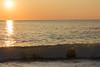 201700904 Bethany sunrise-32.jpg (ashleyrm) Tags: beach delawarebeach bethanybeach towershores ocean waves sunrise travel vacation delaware nature landscape canon canonrebel canonrebelt4i