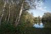 Autumn at the Ponds (Stefan Zwi.) Tags: reflexion herbst autumn kiesteich teich pond lake birken birch sky clouds ngc npc