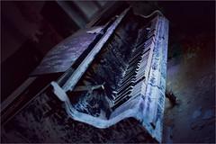 Gloomy. The last waltz. (Gudzwi) Tags: piano klavier abandoned verlassen verlasseneorte lostplaces düster gloomy scary beängstigend creepy gruselig 7dwf crazytuesdaytheme horrorpicture horror ctt beelitz heilstätten beelitzheilstätten spooky schaurig dreadful spotlight unheimlich farbspritzer splashes coloursplashes