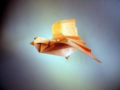 Flying Bird - Yoshimasa Tsuruta (Rui.Roda) Tags: origami papiroflexia papierfalten pájaro pássaro oiseau flying bird yoshimasa tsuruta