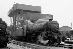 45397 (Gricerman) Tags: black5 black5class 460 willesden willesdenshed willesdenengineshed 45397 steam steambr steammidland midland midlandsteam midlandsteambr br britishrailways brsteam brmidland lms