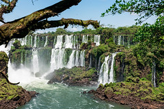 Paradise (Doug Scortegagna) Tags: iguazu iguazufalls waterfall waterfalls falls color colors tree trees frame framing frames leaves water blue green landscape landscapes nature wild natureza argentina brazil brasil fozdoiguaçu cataratasdoiguaçu cataratasdeliguazu paradise nikon d3400 18 140 travel travelling trip