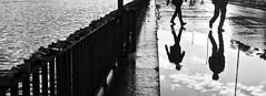 Big lake / little lake (Leonegraph) Tags: paar hanover maschsee reflektion reflection bewegung drausen hannover kontrast regen spiegelung tag unkenntlich wasser xpersonen leonegraph streetphotographer public öffentlich leben lebendig story urban photography spontan spontanious candid unaware unposed personen sitaution street 2017 europe europa germany deutschland monochrome einfarbig bw sw blanco negro bn schwarz weis black white outdoor outside himmel sky city stadt water lake siluette contrast sun