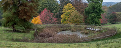 20171015-IMGP0988 (rob mulf) Tags: nymans landscapes pentax westsussex greatbritian england outdoors nature