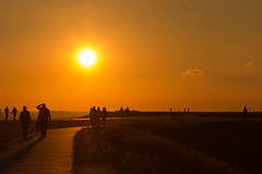 Goldener Oktober (dg3yjb) Tags: goldeneroktober 2017 sonnenuntergang haldehoheward haldemottbruch