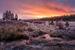 Placerville October Dawn (spudalicious1969) Tags: americanwest autumn clouds dawn daybreak fall frost idaho landscape marsh mountains outdoor outdoors placerville placervilleidaho pnw sky sunrise trailcreek trees west western wetland idahocity unitedstates us ngc