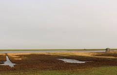 Langwardergroden (Fias Pics) Tags: water wasser emotion moor stimmung strand nature natur licht colours look mood plätze sky landscape himmel heaven light landschaft wattenmeer nordsee