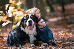 Best friends. (rmikulec) Tags: berner bernese sweet cute baby girl toddler portrait bokeh hike fall autumn friends