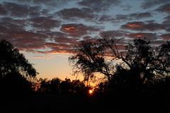 Lake Mungo sunrise (cathm2) Tags: australia nsw outback mungo nationalpark travel roadtrip sunrise morning light sky clouds