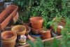 El calor ha acabado con las plantas (Micheo) Tags: spain failure fracasos calor verano heat emptiness macetas pots vacías empty