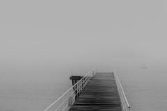 ... (Lanpernas 3.0) Tags: incognitas niebla brima bruma pasarela laconcha naútico incertidumbres 27o