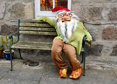 Halloween At Fittie - Footdee Aberdeen Scotland 28/10/17 (DanoAberdeen) Tags: undead livingdead fear spooky tarrysheds fittiefolk creepy clown killer help monster scared ghost horror zombie fright cityofaberdeen aberdeen frightening terror aberdeenscotland dano halloween2017 recent beard dressup gnome scary footdee fittie 2017 danoaberdeen halloween candid amateur 2018 fitdee grampian nikond750 fishing fish fishermen village harbour seafarers trawlers workboats blue bluesky offshore autumn summer spring winter tarry sheds aberdeenharbour fishingvillage olddays historicscotland hiddenscotland scotch history preservation conservation oldaberdeen building architecture futdee