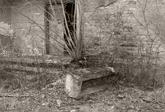 _MG_8419 (daniel.p.dezso) Tags: kiskunlacháza kiskunlacházi elhagyatott orosz szoviet laktanya abandoned russian soviet barrack urbex ruin military base militarybase