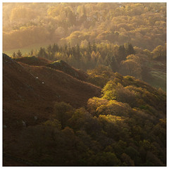 shades of autumn (akh1981) Tags: manfrotto mountains manfotto nikon nisi landscape sunrise travel trees autumn lakedistrict wideangle loughrigg