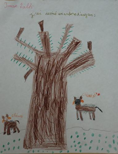 dessin d'Iman sur l'argan