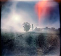 * (Ulla M.) Tags: holga landschaft landscape expiredfilm licht lightleaks lichteinfall lichtreflexe fog nebel mittelformat canoscan8800f 6x6 120 umphotoart ishootfilm film toycamera toycam analog entwicklungsdesaster analogue lomography lensflare filmschooter analogphotography filmphotography