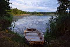 summer moods (JoannaRB2009) Tags: summer mood pond water plants landscape view clouds sky blue boat afternoon miliczponds stawymilickie lowersilesia dolnyśląsk polska poland dolinabaryczy
