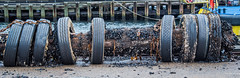 2017 - Halifax - Rusty & Crusty (Ted's photos - For Me & You) Tags: 2017 canada cropped halifax nikon nikond750 nikonfx novascotia tedmcgrath tedsphotos vignetting tires chain chainlink rustychain rusty wideangle widescreen pilings rubbertires shells seashells