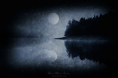 The pale embrace of a shadow (Mimadeo) Tags: dark night mysterious mystery moonlight moon scary lake cold monochrome blackandwhite fog black white tree trees forest reservoir water foggy mist misty scenic woods landscape pine pines horror shadow carpathian carpathians mood moody evening darkness fear creepy transylvania gloomy gothic norway norwegian grunge grungy texture textures blue dusk