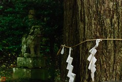 DSC_3894-32 (zunsanzunsan) Tags: 東平田 生石 生石神社 神社 秋 酒田市