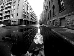 William Street Reflections (MassiveKontent) Tags: montreal bw city gopro monochrome urban fisheye blackandwhite streetphoto montréal quebec water reflection architecture griffintown road building lines sky alley