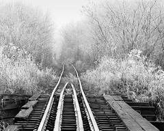 The old railway route (fotoswietokrzyskie) Tags: forest fog winter poland bridge analog landscapes hoarfrost frost medium format photography bw ilford delta 100 scan mamiyarz67 monochrome railroad tracks 6x7