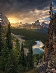 Light Bender (Ryan_Buchanan) Tags: ohara lake sunset ryan buchanan exposurescape canada alberta trees