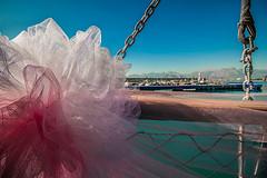 Pink (Melissa Maples) Tags: antalya turkey türkiye asia 土耳其 亚洲 nikon d3300 ニコン 尼康 sigma hsm 1020mm f456 1020mmf456 boattrip party pamka pembeathenalar supportgroup cancer breastcancer memekanseripsikososyaldestekgrubu boat kaleiçi harbour marina lighthouse autumn mountains decorations pink