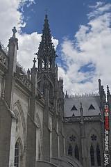 cathedral 3 (punkbirdr) Tags: api audy birds birding d7100 nikkor24mmf28af ecuador punkbirdrphoto quito
