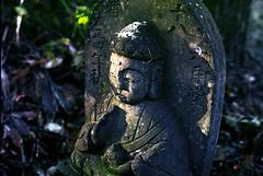 Buddhas on the ground (threepinner) Tags: reversal negative negaposidevelopment iso100 selfdeveloped mikasa hokkaidou hokkaido northernjapan japan autumn buddha pentax me rikenon 50mm f17 観音山 三笠 北海道 北日本 日本 野仏 石仏