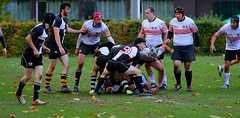 AW3Z0459_R.Varadi_R.Varadi (Robi33) Tags: action ball ballsports championship ei field game rugby power match fight play sports switzerland deutschland alpencup referees team viewers