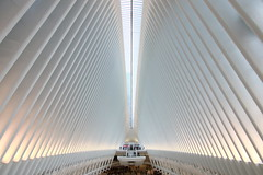 World Trade Center Transportation Hub (_dankhn) Tags: newyork newyorkcity manhattan worldtradecentertransportationhub worldtradecenter metro station urban perspective centralperspective symmetry architecture