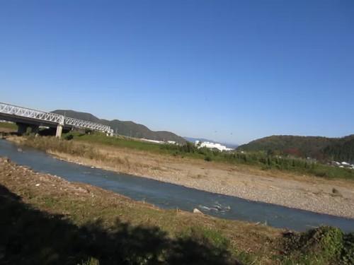 dragonflies flocking near Hino River
