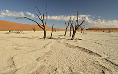 Deadvlei, Namibia (clasch) Tags: africa nikkor nikon d7000 landscape nature dune namib desert sand orange sossusvlei national park 1224 namibia tree naukluft blue dead vlei deadvlei