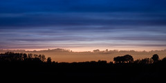 Shifted Horizon of a Landscape (Beppe Rijs) Tags: horizon landscape blue hour silhouette sky longexposure le zoom shift tree