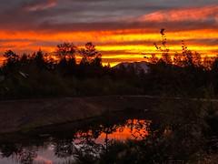 Snoqualmie sunrise (ScottElliottSmithson) Tags: hdr scottelliottsmithson scottsmithson dtwpuck pacificnorthwest northwest wa iphone morning pond washingtonstate sunrise snoqualmie