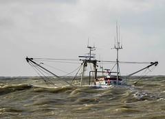 It's wavy... (Jaedde & Sis) Tags: weather sailing fishing hvidesande hidden waves challengefactorywinner thechallengefactory perpetualwinner storybookwinner sweep