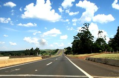 The road and the clouds.... (ana.jerlich) Tags: ciel cielo blue bluesky clouds whiteclouds road estrada azul sunlight light grey street perspective sky blueskies flickr explorer sunday monday vacance vacation tree green