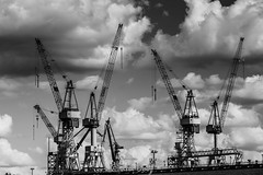 The quiet before the storm (ulidolz) Tags: dock blackwhite schwarzweis crane werft kran harbor hafen hamburg eos5dmarkiv canon