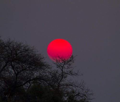 Sun going down , like Japanese Flag , Botsolano, _9391