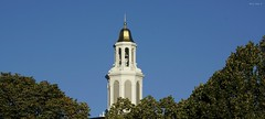 Harvard University (Harry Lipson) Tags: harvarduniversitybusinessschool dome gold golden golddome architectural harvard harvarduniversity harvardbschool goldleaf harrylipson harrylipsoniii belltower cupola shine shining glittering glimmering shimmering
