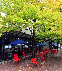 Red chairs, blue umbrellas and fallen leaves (peggyhr) Tags: peggyhr waves coffeeshop redchairs fallenleaves trees autumn umbrellas blue reflections sidewalk northvancouver bc canada niceasitgets~level1 niceasitgets~level2 niceasitgets~level3 infinitexposurel1 thelooklevel1red thegalaxy thegalaxystars thelooklevel2yellow thelooklevel3orange thegalaxystarshall0ffame