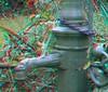 öffentliche Wasserpumpe, Berlin-Steglitz, Herderstraße (rolfmarquardt) Tags: anaglyph 3d stereo rotgrün rotcyan berlin wasserpumpe