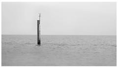 Southsea (spencerrushton) Tags: spencerrushton spencer sun rushton canon canonlens canonl canon5dmkiii 5dmk3 5dmkiii 24105mm canon24105mmlf4 manfrottotripod manfrotto lee leefliters littelstopper southsea uk sea seaside landscape seascape beautiful blackandwhite black white monochrome summer 16x9 raw